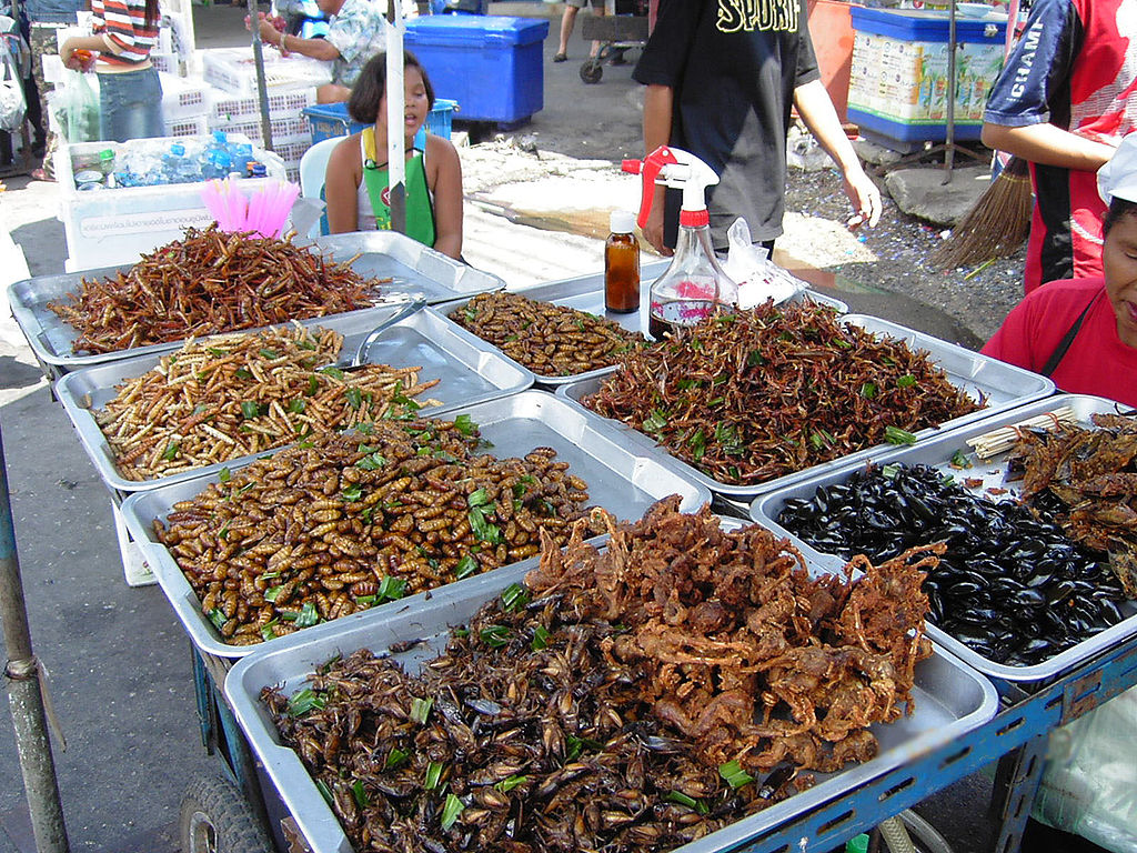 edible insects nutritional value